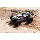 Destructor BL - 1:8 Truggy brushless